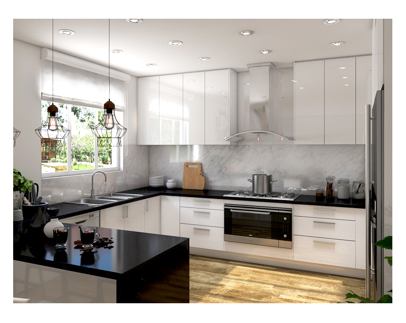 Modern Kitchen and Kitchen Renovation Design and Tips